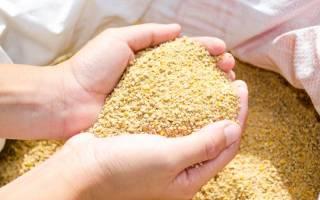 Комбикорм для бройлеров — цены, состав, рецепты приготовления