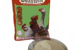 Фелуцен для кур: линейка прикормовых добавок, состав, дозировка