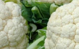 Цветная капуста Сноуболл: выращивание и уход