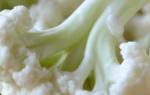 Болезни цветной капусты: фото, описание и лечение