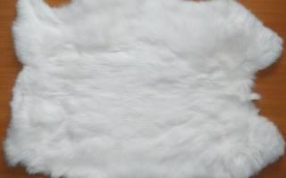 Как разделать кролика: забой, разделка и выделка шкурки