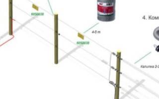 Электропастух для овец: как правильно выбрать?