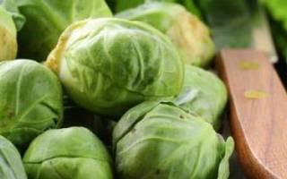 Когда убирать брюссельскую капусту с грядки?