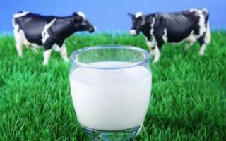 Жирность коровьего молока — вред и польза для здоровья