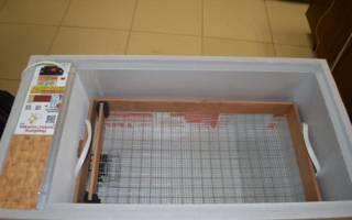 Инкубатор для яиц «Блиц-48» — отзыв, преимущества и недостатки