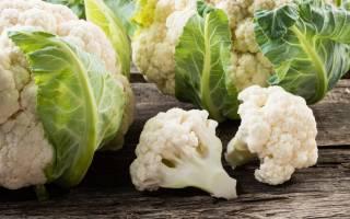 Когда убирать цветную капусту с грядки?