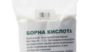Борная кислота для капусты: опрыскивание и подкормка