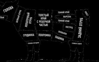 Разделка туши говядины: схема