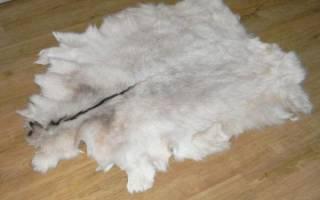 Как выделать шкуру козы в домашних условиях: описание всех этапов