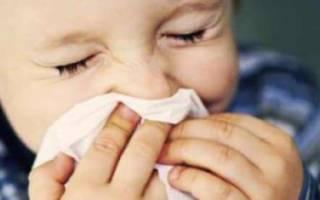 Аллергия на кролика у ребенка или взрослого: симптомы и лечение