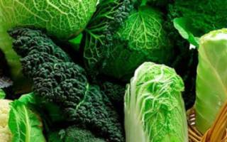 Сорта и виды капусты: фото с названиями
