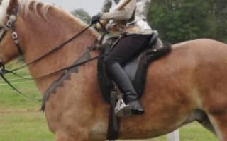 Дестриэ — порода лошадей родом из древнего Рима