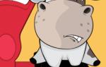 Как узнать, сколько весит бык, без весов разными способами