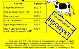 Комбикорм для КРС (коров, телят): виды и состав